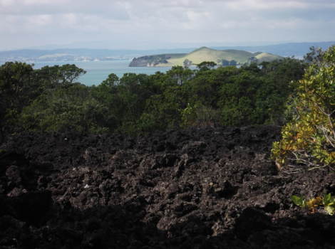 Lava rock with a view
