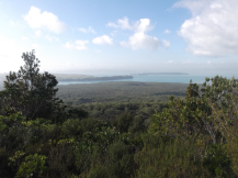 The island next to Rangitoto, Motutapu