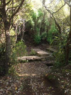 Rangitoto was used for a look out point in WW2. No enemies came.