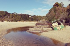 Abandon ship! at Butterfield Beach.