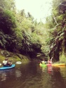 Explore by kayak.