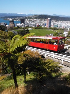 Yes... it just got more New Zealand. Here comes the cable car.