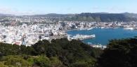 Ooo, Wellington.
