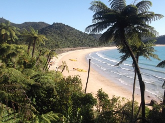 abel tasman beach 5