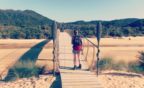 bridge hiking abel tasman